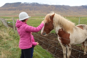 Marianne getting to know the locals.