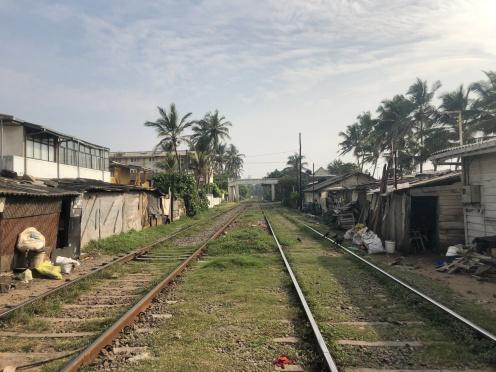 Tracks in Mount Lavinia.